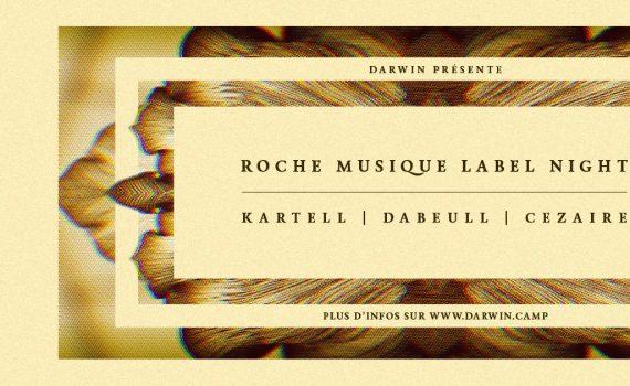 Roche musique night