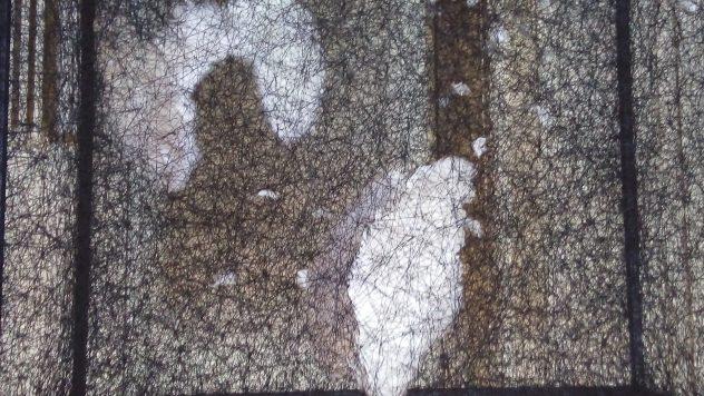 Installation de Chiharu Shiota contenant ailes et plumes à l'institut Magrez